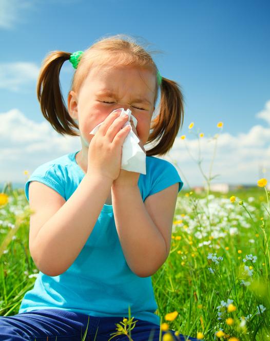 Spring Allergy Season Is Here |